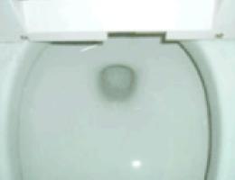 トイレクリーニング例1 after
